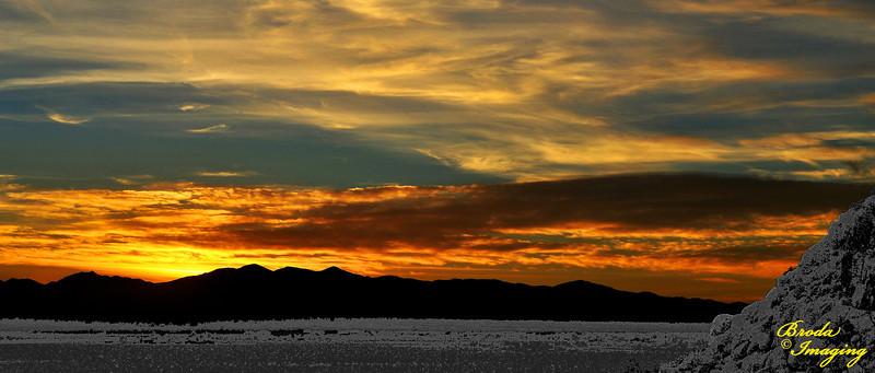 Contrasts - Desert Sunset