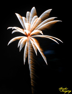 Fireworks In The Wind-43 ©Broda Imaging 2015