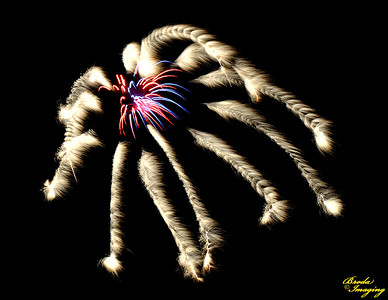 Fireworks In The Wind-47 ©Broda Imaging 2015