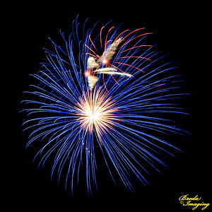 Fireworks In The Wind-78 ©Broda Imaging 2015