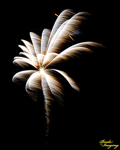 Fireworks In The Wind-17 ©Broda Imaging 2015