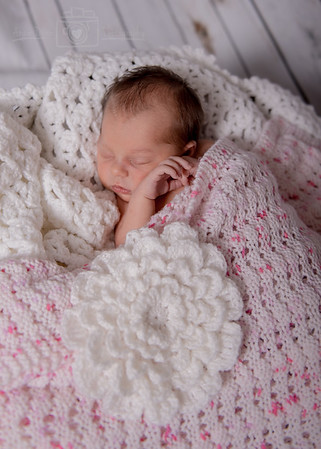 Bromley Newborn
