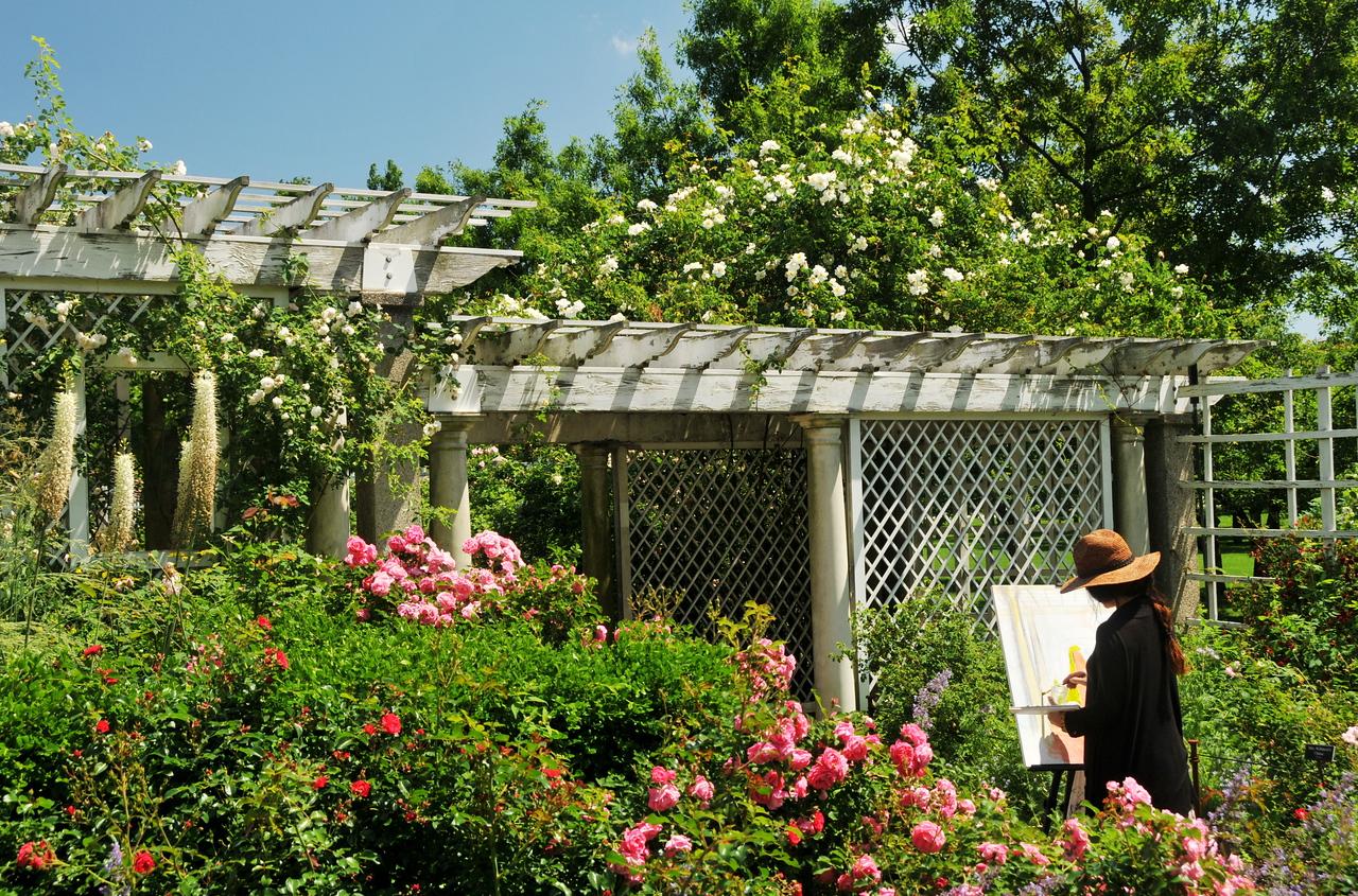 Rose Garden Painter