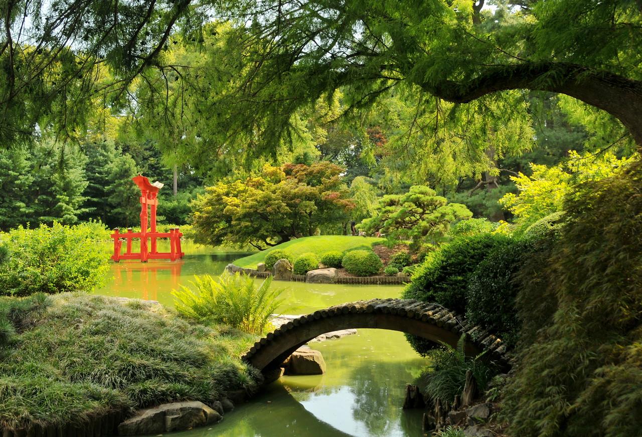 Japanese Garden View