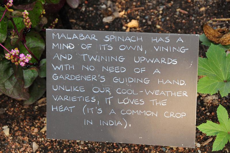 Taken at Chicago Botanic Garden