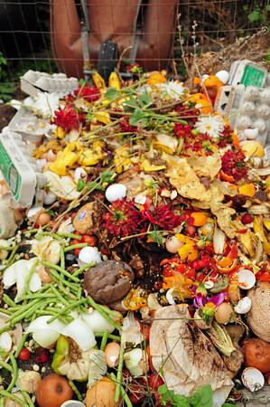 F.  Compost