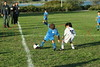 Brooklyn - October 9: Players compete at  Brooklyn Italians Soccer Academy Columbus Cup at Varazanno Fields on Saturday, October 9, 2010 in Brooklyn, NY.  (Photo by Steve Mack/S.D. Mack Pictures)