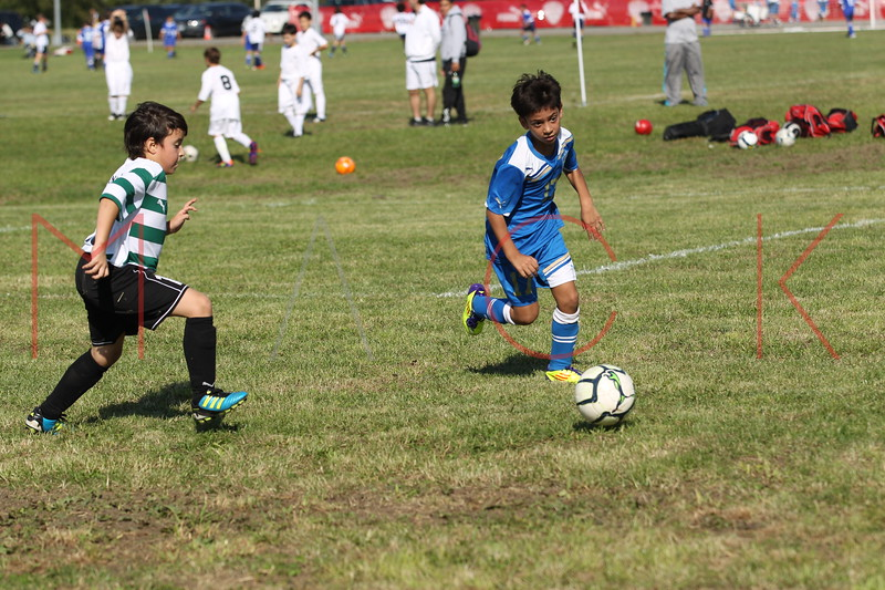 Brooklyn - October 8: Columbus Cup:  Brooklyn Italians AS/Roma Red vs. Den Of Lions at Drieir Offerman Park Field # 7 on Saturday, October 8, 2011 in Brooklyn, NY.  (Photo by Steve Mack/S.D. Mack Pictures)