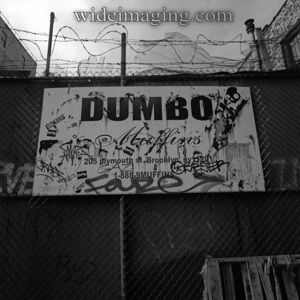 DUMBO Muffins, July 2nd 2009