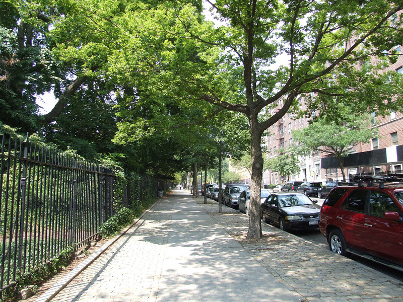 View up Washington Avenue toward the north entrance of the Garden.