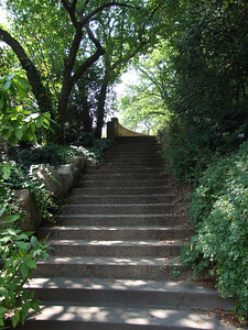 """Stairs leading from the west edge of the Herb Garden to the esplanade, called """"the Overlook,"""" which gives a commanding view of the grounds of the Botanic Garden."""