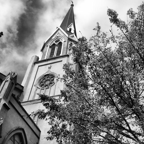 Church and Tree Carroll Gardens