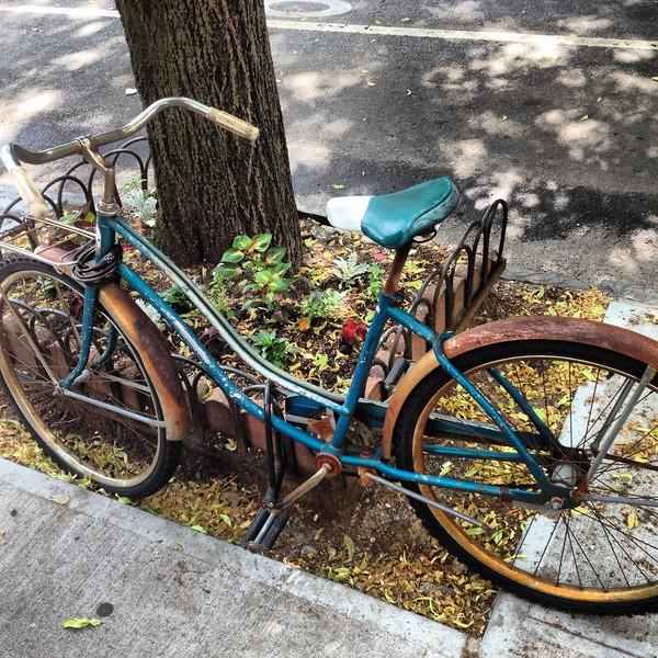 Rusted Bike Carroll Gardens