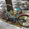Rusted Bike Carroll Gardens