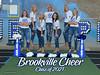 BV Senior Cheer Poster