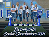BV Senior Cheer Poster 2020 copy
