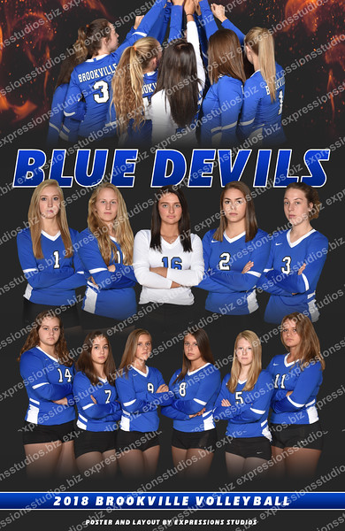 BV Volleyball Poster copy