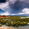 Roebuck Bay, Broom