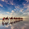 Camel ride on Cable beach Broome