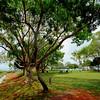 Town beach park, Broome