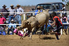 HC4950222 Halls Creek rodeo