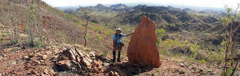 Dixon range in the Kimberley, northern Australia; you wonder how trees can survive in such a hard country