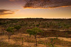 western australia outback