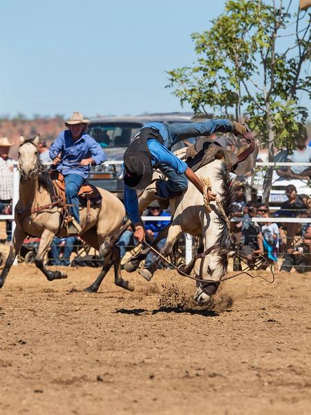 Rodeo HC-00495-_0407 copy