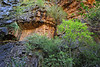 steep cliffs in numerous waterfalls found in the kimberley