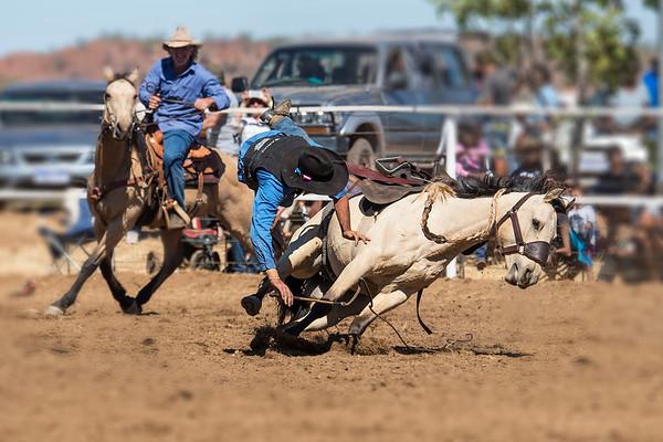 Rodeo HC-00495-_0403 copy