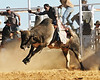 Bull bare back rider at Halls Creek rodeo, western australia
