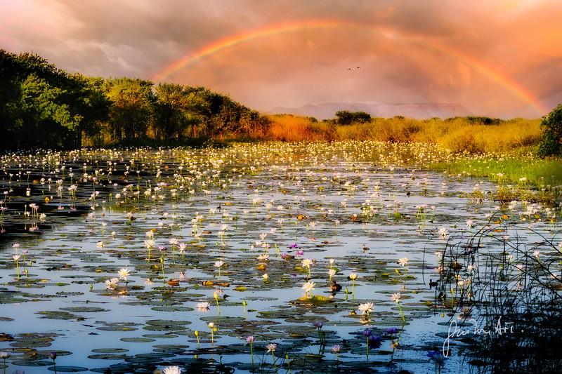 Parrys Lagoon