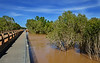 Willare Bridge over the Fitzroy river in the Kimberley, north western australia just after some big rain which created some extinsive flooding  over the region, the only road which is the Great northern highway was closed for many days and actually the water went over the bridge<br /> so much water has been a rare sight for many years in this region