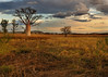 Kimberley plain, spectacular savannah lands, Wyndham area