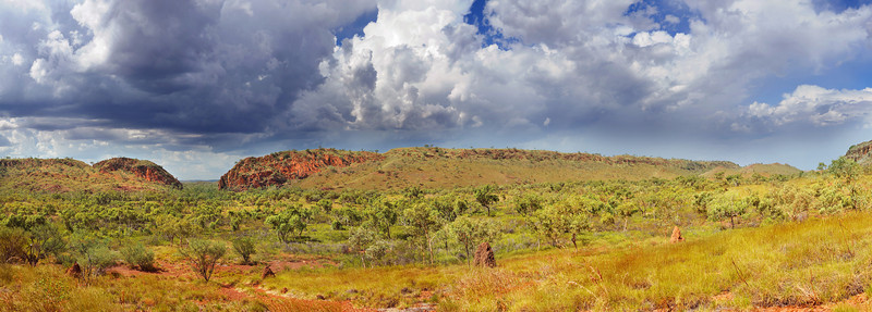 Saw Pit Gorge and surrounding kimberley hills