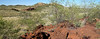 Quartz outcrop known as White Hill in the Kimberley, view taken from a laterite plateau
