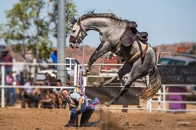 HC4950367 Halls Creek rodeo