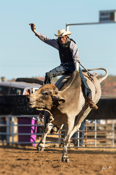 Halls Creek rodeo, bull riding
