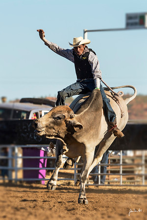 Halls Creek rodeo, bull riding