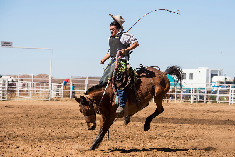 Rodeo HC-00495-_0391 copy