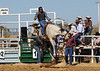 very popular Halls Creek rodeo