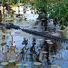 croc salty 086902017_0015 copy - Copy