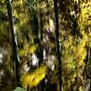Kakadu 086602017_0058 copy