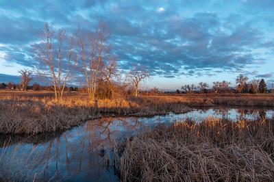 Ellie's Pond