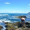 Alan Princess Bay Wellington December 2013