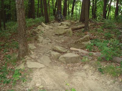Trail Portfolio Highlights