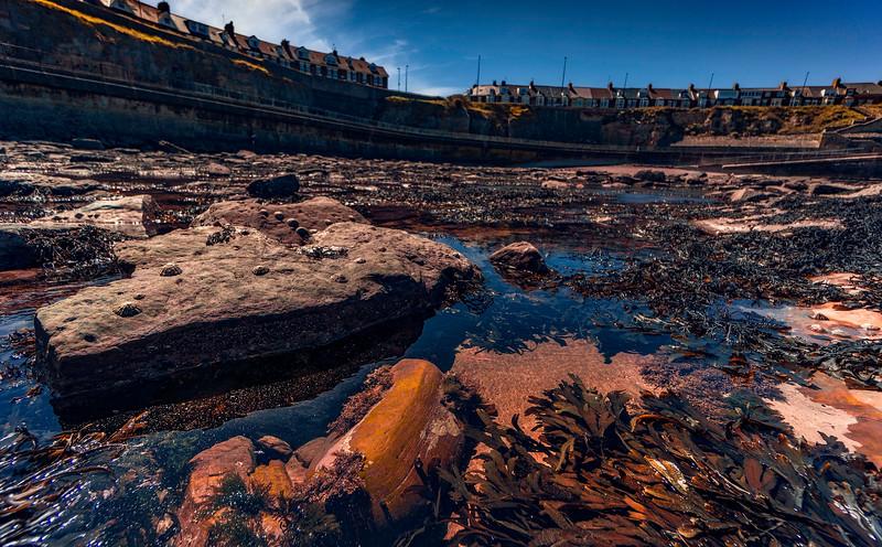 Browns Bay@Whitley Bay-075.jpg