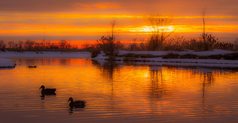 ~~ Surreal over Bountiful ~~<br /> <br /> These ducks favored me most by coming in the frame at an opportune time.