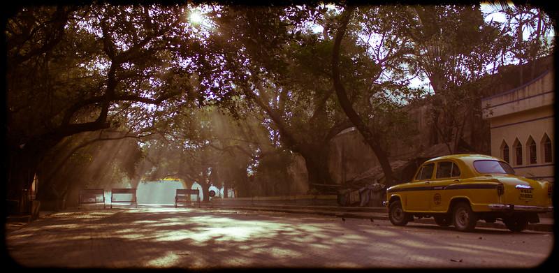 ~~ Calcutta Morning ~~