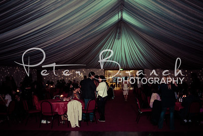 brent-town-hall-party 028